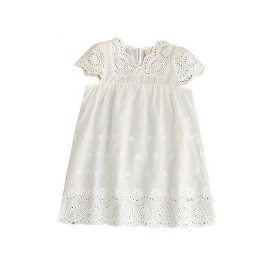 Hollow Embroidered Sleeve Dress for Girl