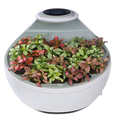 Indoor Garden Desktop Air Purifier with HEPA Filter Activated Carbon Filter and Negative Ions