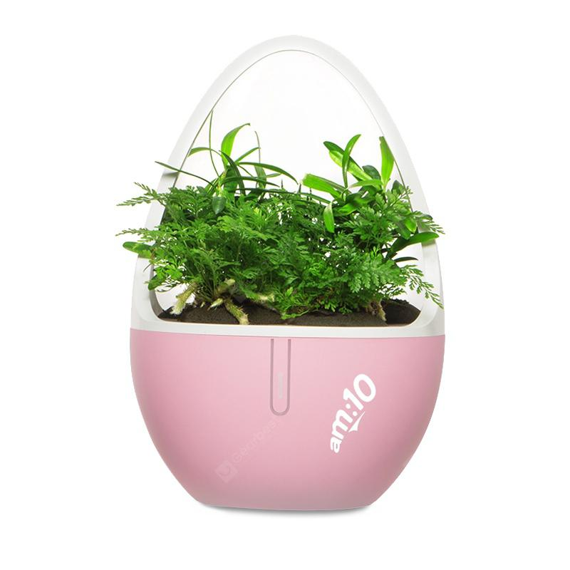 Desktop Small Plant Aromatic Diffuser Coupons