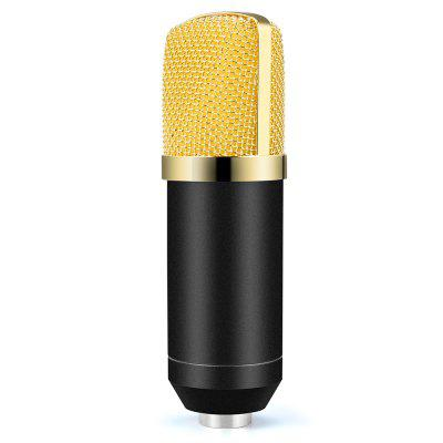 Red Artifact Ultra-Fidelity Computer Microphone
