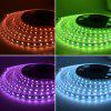 Waterproof 5M LED Strip RGB SMD 5050 300LEDS DC 24V Flexible Light 4 Color in 1 - BLANC CHAUD