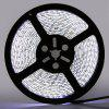 5m Waterproof 600 LED Strip SMD 3528 DC 12V - WHITE