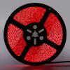 5m LED Strip Light 24W 3528 SMD DC12V 1PC - RED