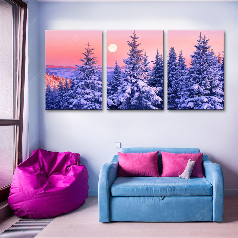 Special Design Frameless Paintings Snow Print 3PCS