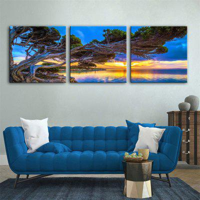 Special Design Frameless Paintings Peculiar Print 3PCS