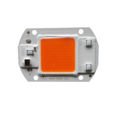 30W 220V Fai da Te Chip Luce LED