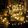 LED Star String Light for Indoor and  Outdoor Christmas Decorations - WARM WHITE