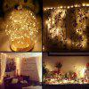 USB 5M 50LEDS Silver Wire Strip Lights Fairy Christmas Holiday Wedding Party 1PC - WARM WHITE
