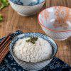 1 Piece Simple Style Ceramic Household Rice Bowl - GLACIAL BLUE ICE