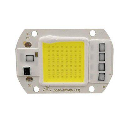 50W 220V DIY COB LED Chip Bulb Bead for Floodlight