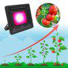 50W Water-resistant Flood Light Plant Light - BLACK