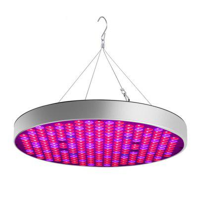 YWXLight 50W LED Plant Grow Lights 250 LEDs Indoor Red Blue Spectrum Blüte