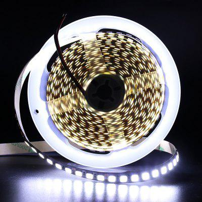 SMD 5054 LED Strip 5M 120LEDS / M Luce a nastro flessibile DC12V Più brillante di 5050