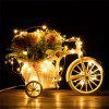 LEDs Powered Copper Wire String Fairy Light Lamp Flexibel - WARM WIT
