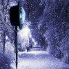 Mgy-047 LED outdoor snow light projection light lawn light snow flower light cou - BLACK