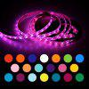 ZDM 2M  Waterproof USB 5050 RGB LED Flexible Strip Light with 24 Key IR Remote - MULTI
