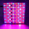 45W Full Spectrum Panel LED Grow Light for Indoor Plants Flower Hydro Garden - MULTI-C