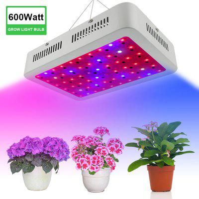 Factory direct 600W dual chip square high power plant light