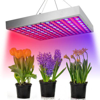 30W225 Red and Blue LED Plant Growth Lamp
