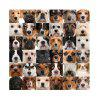 HD impermeabile moda semplice animale Cento PetsDog Home Decoration Poster di stampa - FANTASTICO