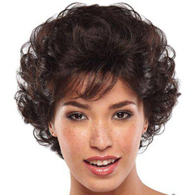 Fashonable Small Curl Short Wig