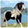 Black and White Horse Super Soft Non-Slip Natural Rubber Notebook Mouse Pad - MULTI
