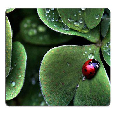A Gram Insect Natural Rubber Antiskid Notebook Computer Mouse Pad