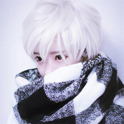 Hommes Universal Cosplay Argent Blanc Cheveux Courts