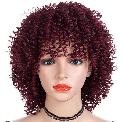 Small Curl Afro Short Wig