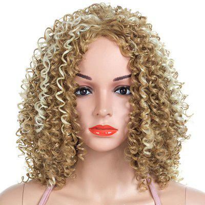 Gradient Ramp Fluffy Small Curl Wig