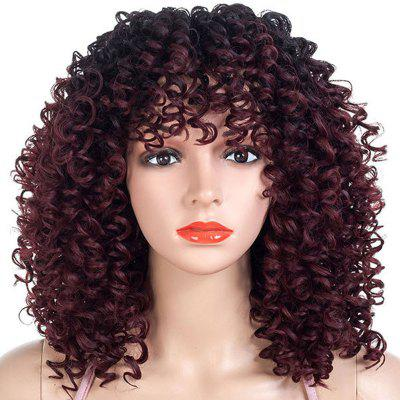 African Small Curl Gradient Ramp Wig