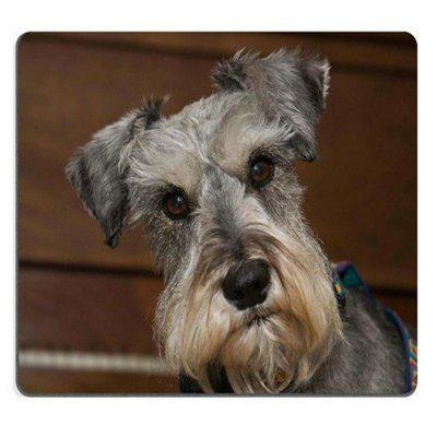 Piękna Cool Multicolor Gaming Square Mouse Pad