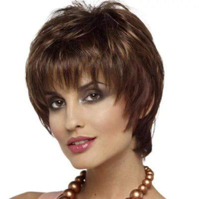 Gradient Ramp Fluffy Slim Face Wig