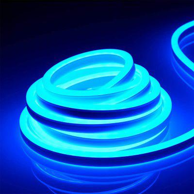 Waterdichte multicolorneon Neon Light Strip Flexibel voor Decor Indoor Outdoor220V