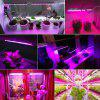 ZDM plant strip light 5m 5050 waterproof full spectrum hydroponic plant flower 12v6a power supply