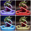 ZDM 1-5 Metet per metre 60pcs 5050 RGB LED Strip Lights Kit with IR 44key Remote Control  DC12V
