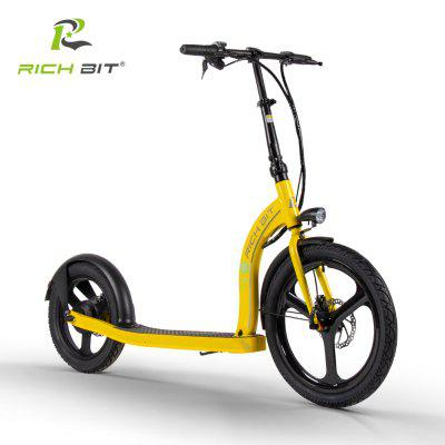 RICH BIT H100 Foldable Electric Scooter 36V 250W 6Ah 20-16 Inch Lithium Battery