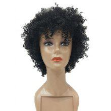 Short Oblique Bang Shaggy Afro Curly Synthetic Wig