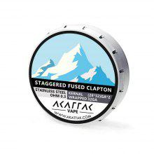 AKATTAK Stainless Steel Staggered Clapton Heating wire 20pcs